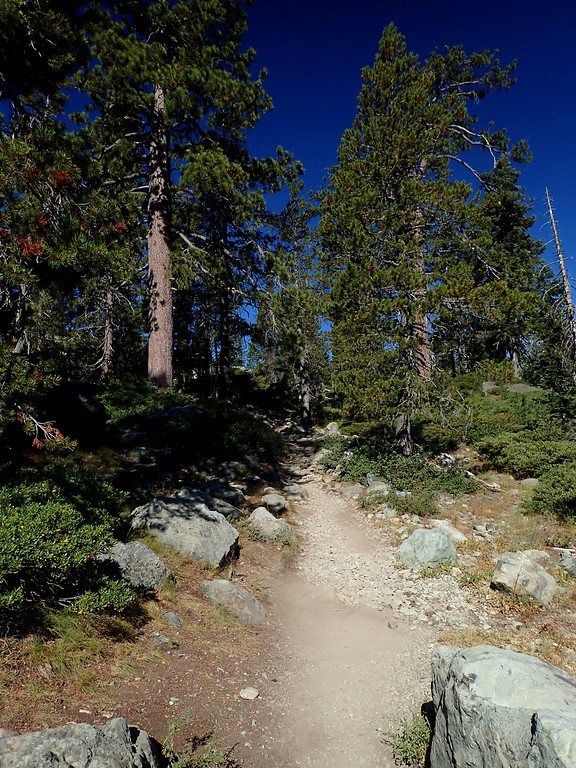 Mount Elwell Tahoe National Forest California