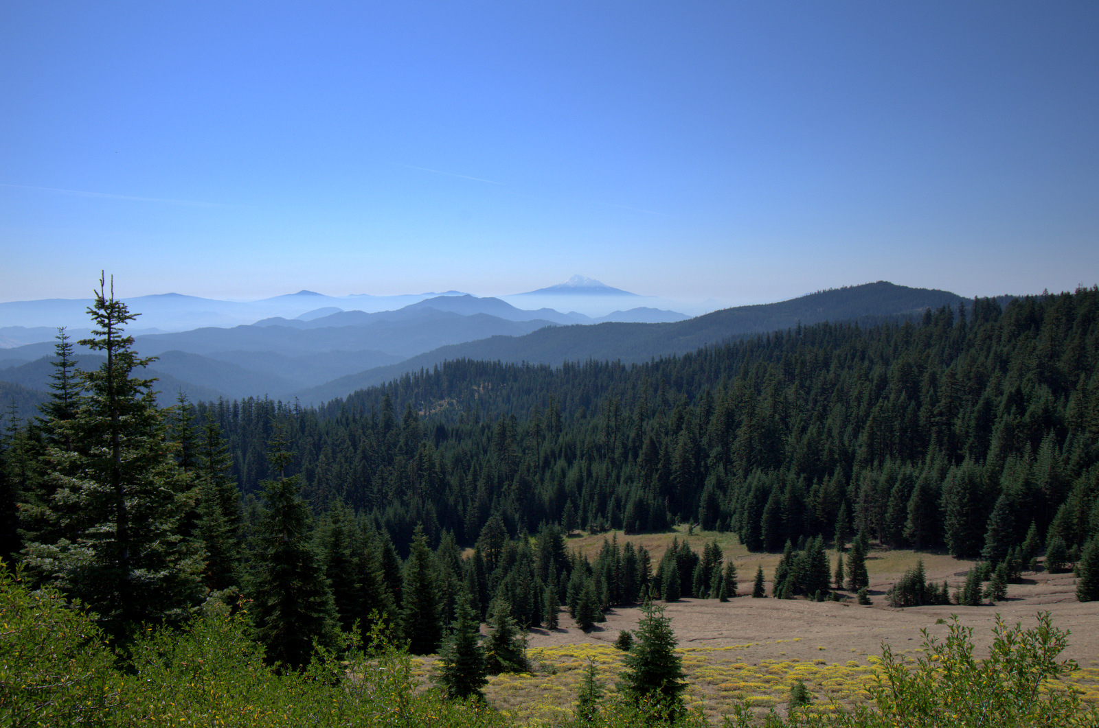 Siskiyou Crest Drive Forest Road 20 Oregon
