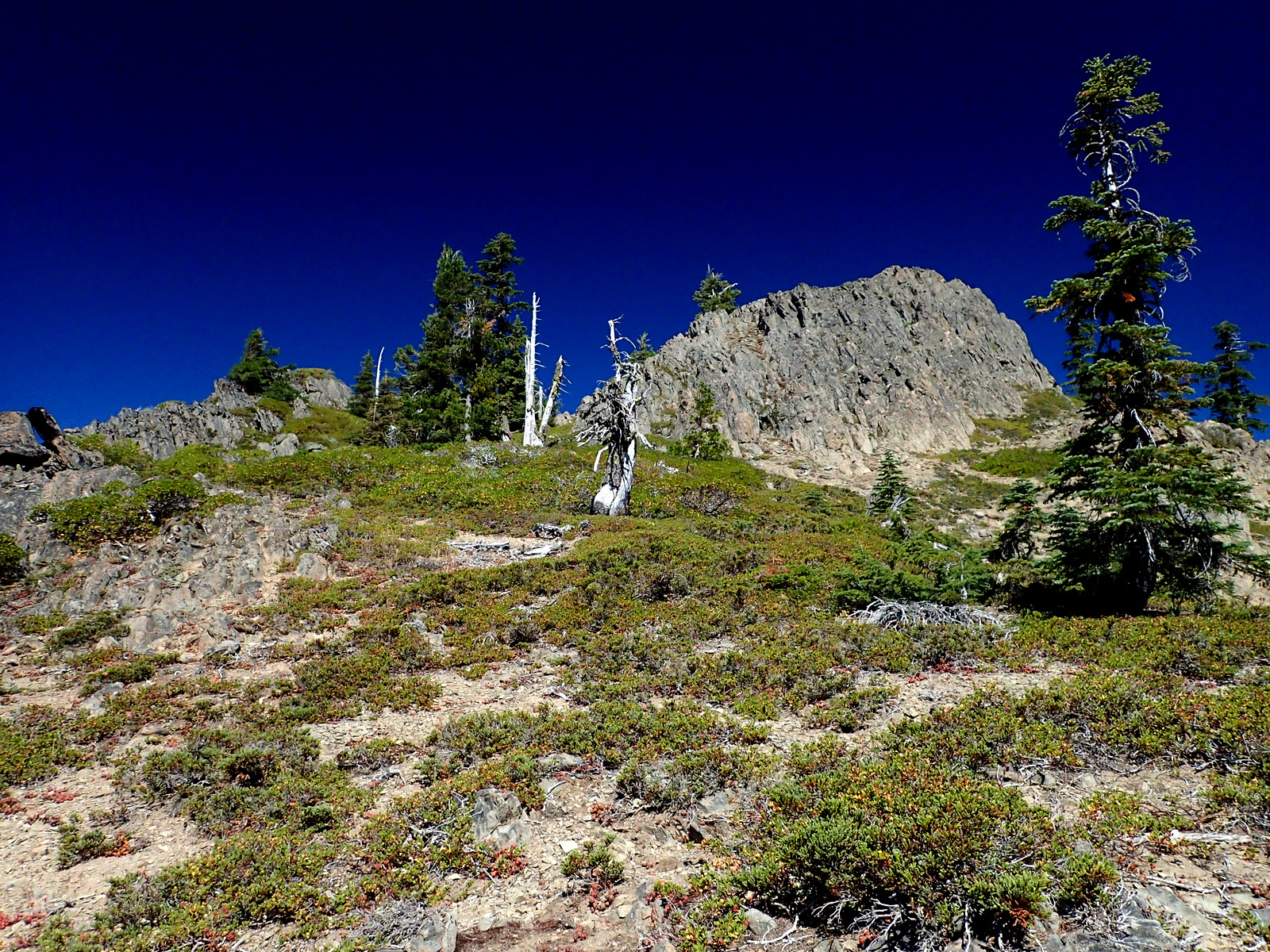 Highrock Mountain Rogue-Umpqua Divide Wilderness Oregon