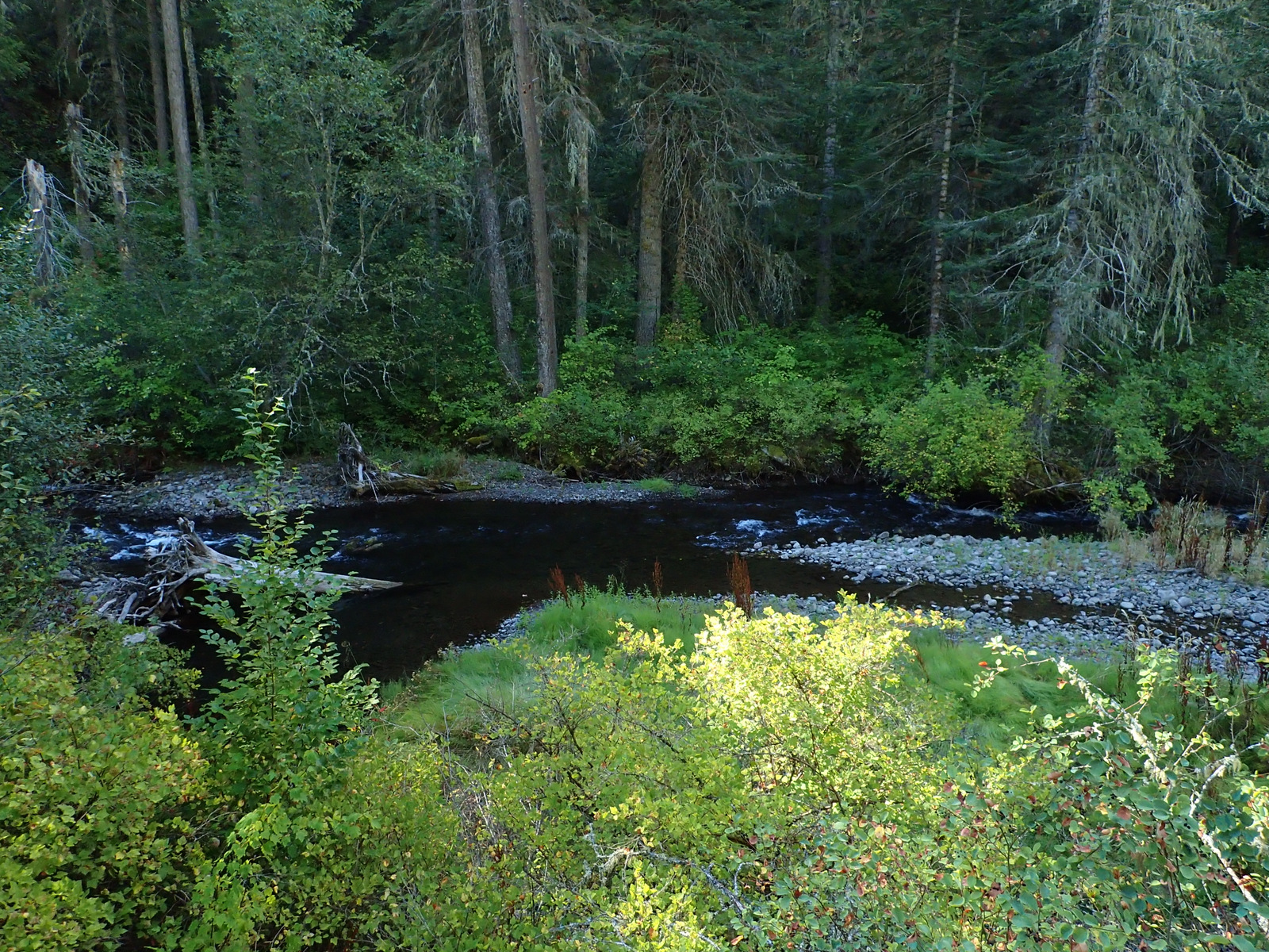 North Fork Umatilla River Wilderness Oregon