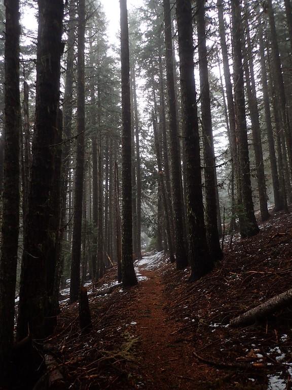 Grizzly Peak Jackson County Oregon