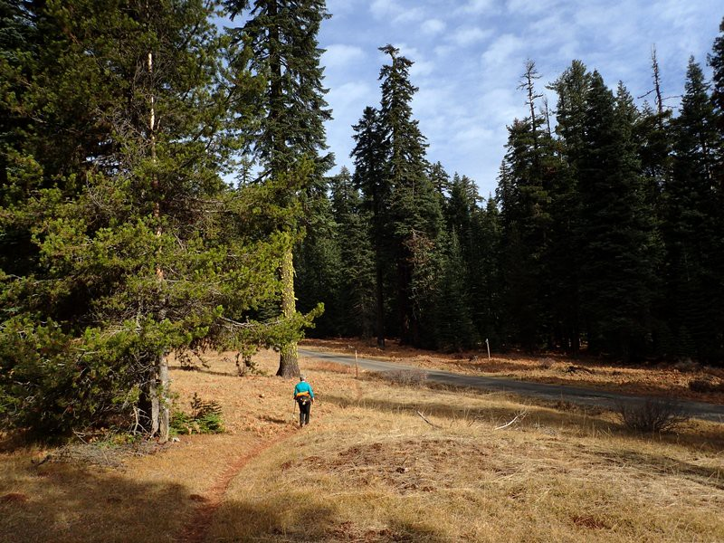 Along the PCT on the Dead Indian Plateau, Southern Oregon