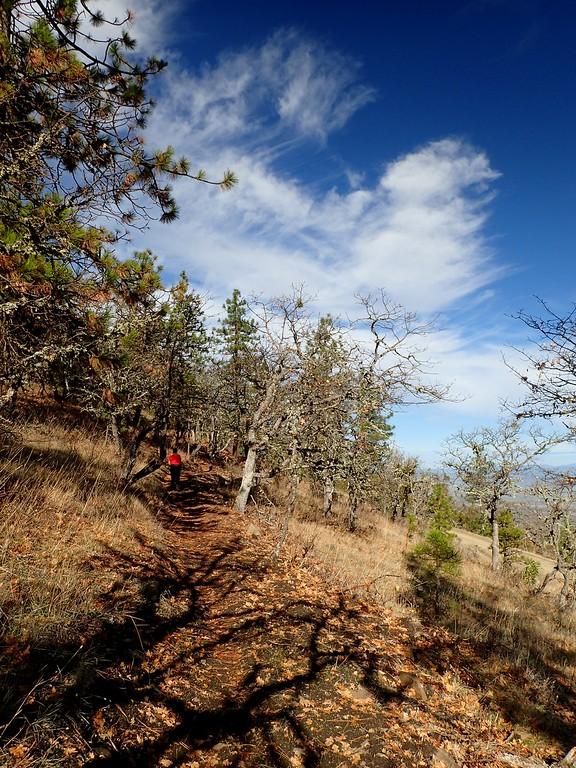 Roxy Ann Peak Prescott Park Oregon