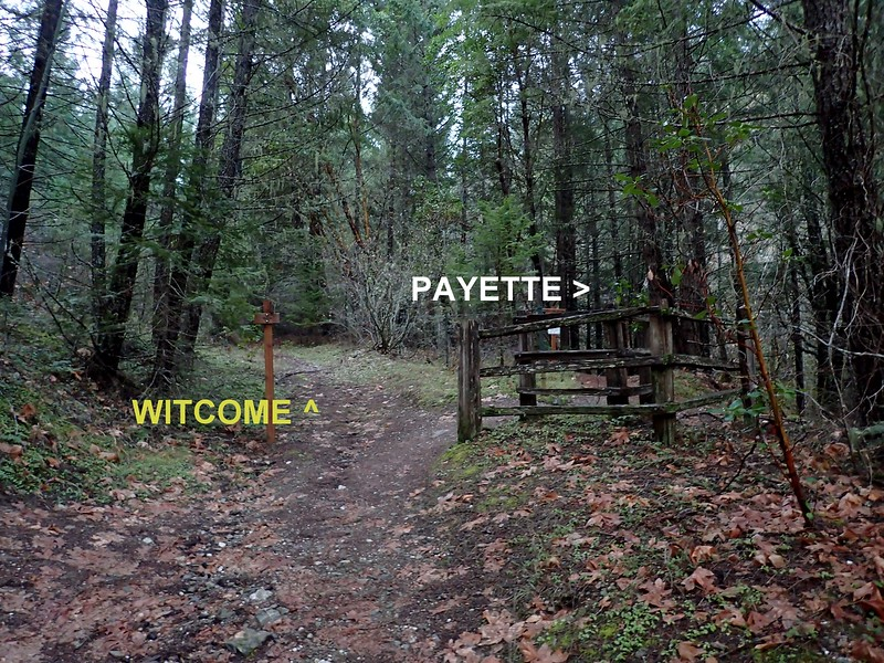 Witcome Stock Driveway Payette Trail Applegate Lake Oregon