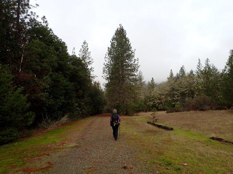 Bolt Mountain Grants Pass Oregon