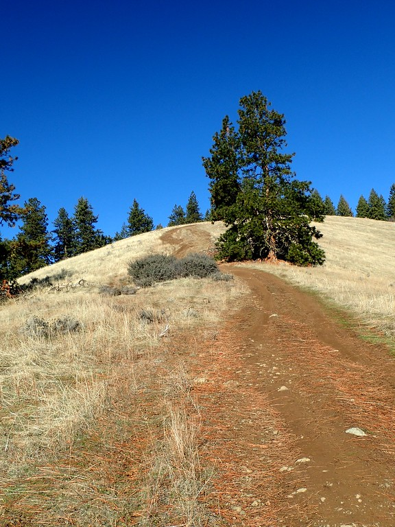 Anderson Butte Applegate Valley Southern Oregon