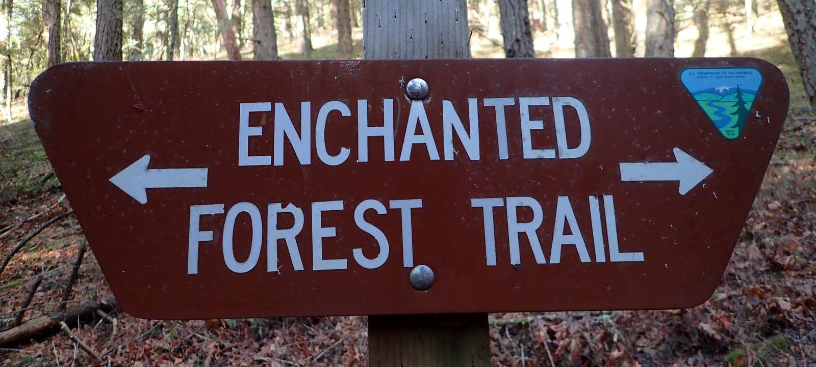 Enchanted Forest Trail Applegate Oregon