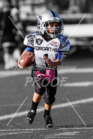 2016-15 Morgan Hill Raiders
