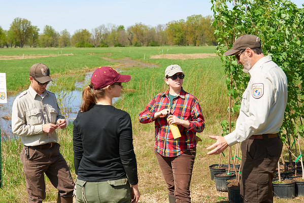 2017_UWL_Biology_Tree_Restoration_Meredith_Thomsen_Flood_Plain_0057