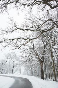 2017_UWL_Graddad_Bluff_Snow_0081