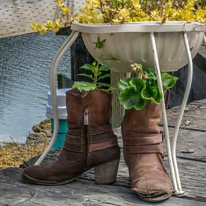 Seldovia boots #3