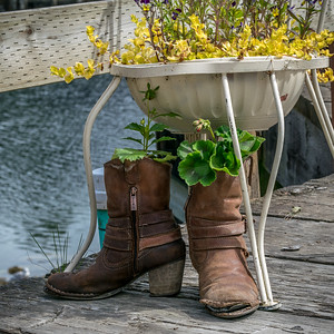 Seldovia Boots #4