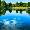 Pond of Bradley Fair