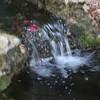 Outstanding Waterfall