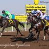 Horse racing at Jebel Ali, Dubai, UAE