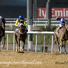 Horse Racing, World Cup Carnival, Meydan, Dubai