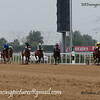 Morawi, ridden by Chris Hayes wins the  Mahab Al Shimaal (group 3), at Meydan Dubai World Cup Carnival.