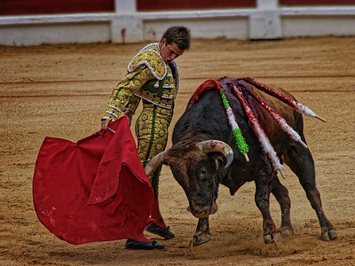 Bullfight in Spain by Gary Emord - Score: 13 Honorable Mention