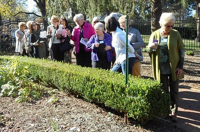 Forest Garden Club Tours Tanglewood Arboretum