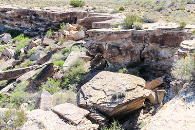 Petroglyphs - Petrified Forest (2000 Years Old)