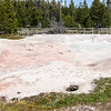 Fountain Paint Pots - Yellowstone National Park