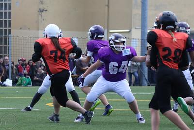 2016; AFBÖ; American Football; Junior Tigers; Vienna Vikings; U13; Youth