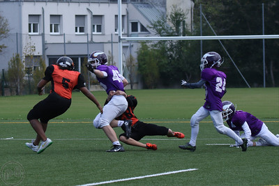 2016; AFBÖ; American Football; Junior Tigers; Vienna Vikings; U13; Youth