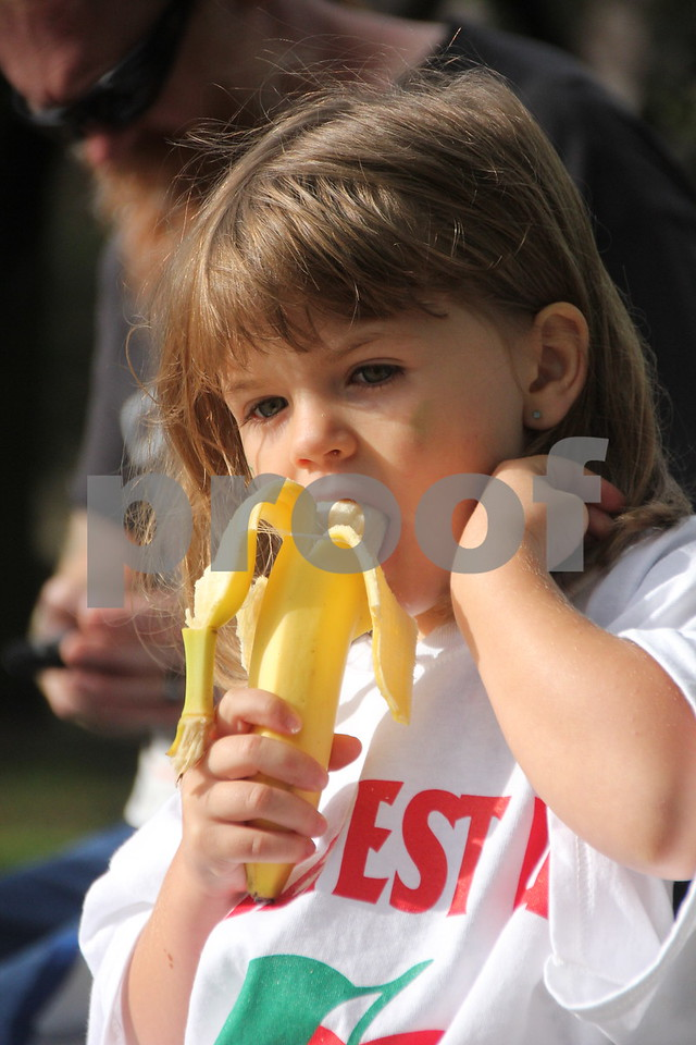 The 2016 Applefest Run took place at the city square by the Fort Dodge Library on Sunday, September 25, 2016. Along with participants that were running in the event there were refreshments available for runners after their run, and a few games for the kids complete with prizes. Shown enjoying a banana at the event is:  Avamarie Kirby.