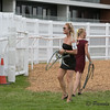 Maria Hagman-Eriksson and her twin sister...heading the horses onto the track