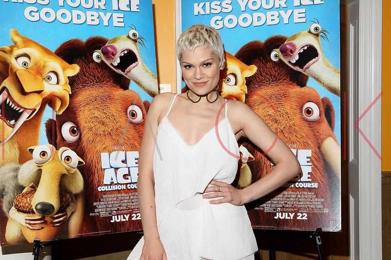 655967133SM007_Ice_Age_Coll