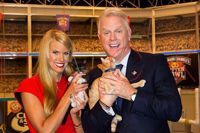 """NEW YORK, NY - SEPTEMBER 28:  """"Kitten Bowl IV"""" Taping at AMV All Mobile Video on September 28, 2016 in New York City."""