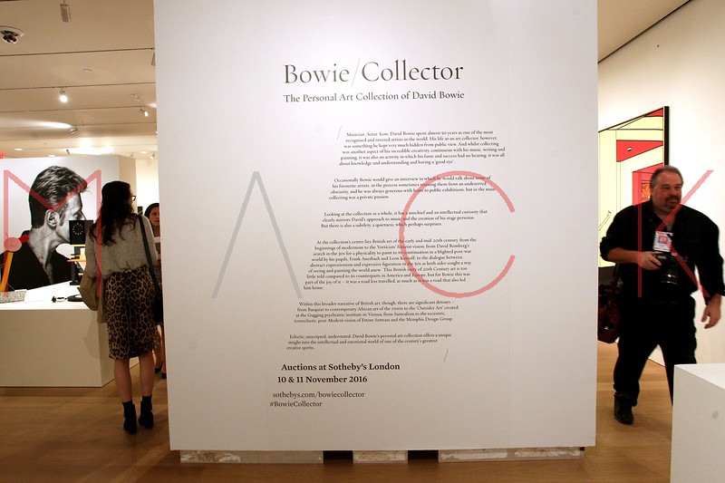 672103051SM017_Bowie_Collec