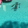 Zuni/Navajo/Hopi god? in the bottom of the pool