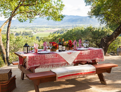 Meals, relaxed and formal, at wineries and vintner homes  Photo courtesy of the Napa Valley Vintners