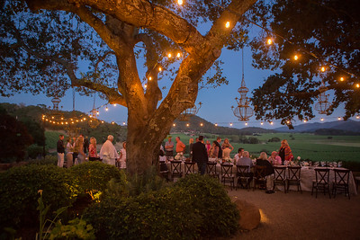 Guests dine overlooking Gargiulo Vineyards.   Briana Marie Photography for Napa Valley Vintners