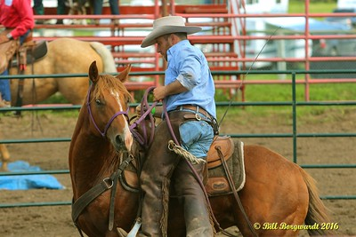Horse Training - Daines Pick-nic 2016 0078