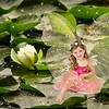 July 2016  Fairy Ava on a Lily Pad