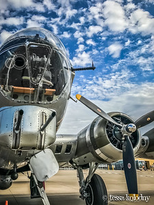 B-17 Flying Fortress-4911