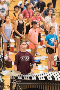 Tiger-Band-Preview-4225
