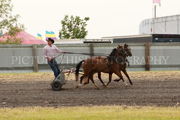 Hallock Chariot Races