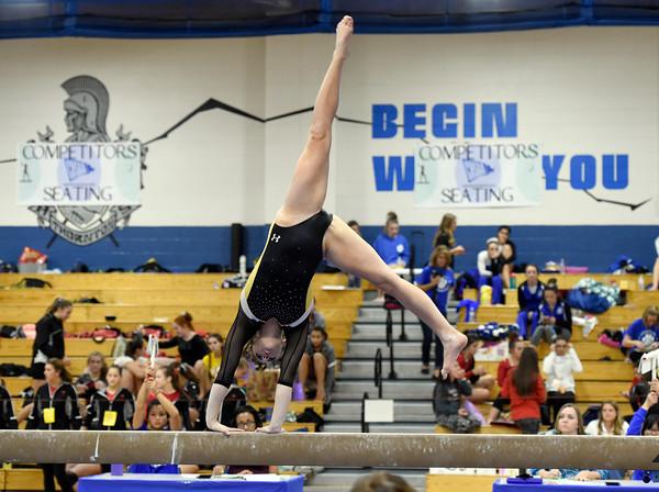 4A State Gymnastics