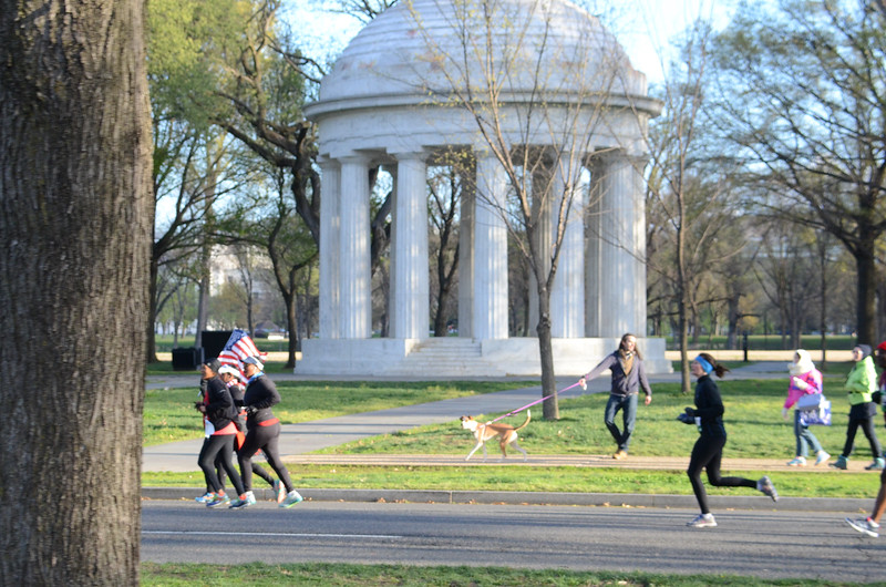 2016 Cherry Blossom 10 Mile on the Course - Photos by Karen Mitchell