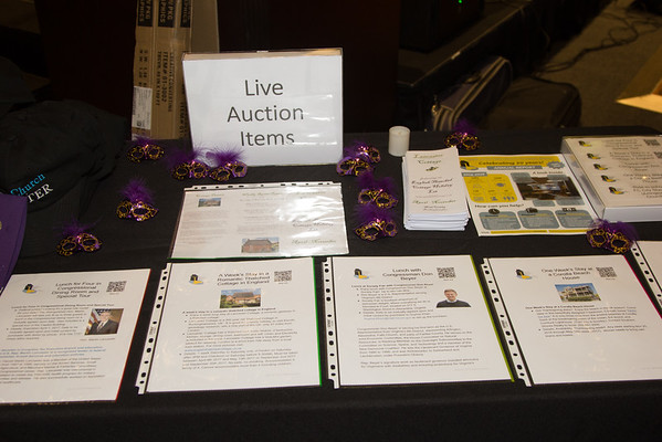 2016 Cabaret and Auction