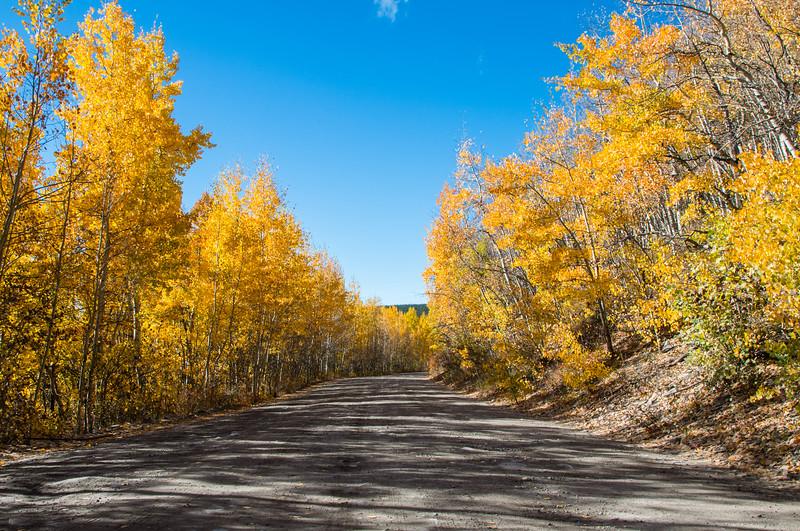 IMAGE: https://photos.smugmug.com/2016-Captures/i-6Ch3Pr5/0/L/yellow%20road-L.jpg