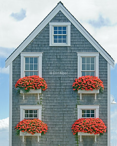 Provincetown Saltbox