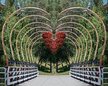 Line, Shape-Mirror image,