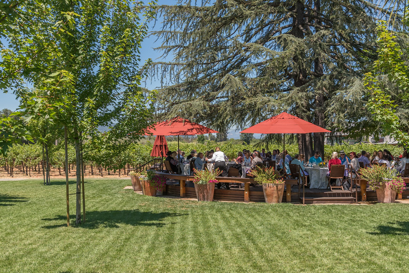 Vintner's Luncheon at Grgich Hills Estate