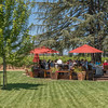 Vintner's Luncheon at Grgich Hills Estate