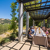 Vintner's Luncheon at Cliff Lede Vineyards
