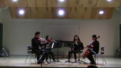 KPA 2016 Opus Youth Orchestra - Eine Kleine Nachtmusik by Mozart